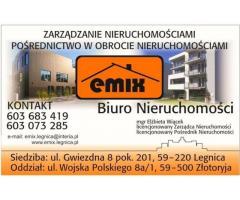 Działka w Niedaszowie, możliwość dokupienia poniemieckiego domu